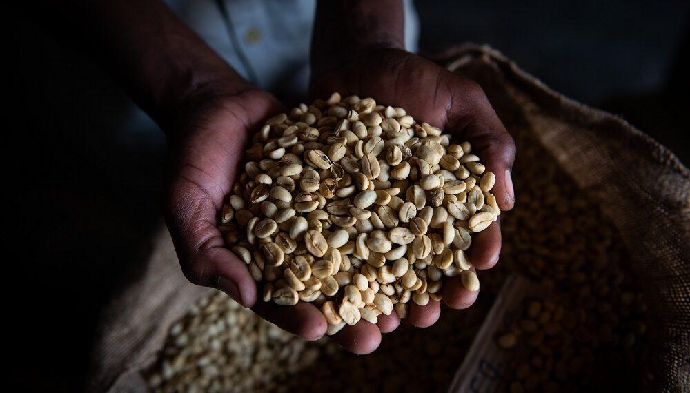 In Mozambico un sacco ermetico che cambia la vita
